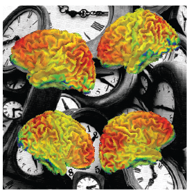 abstract image of brains and clocks