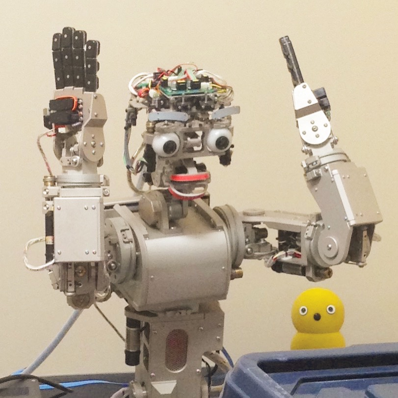 Figure 1. A bird and a robot surprise each other.