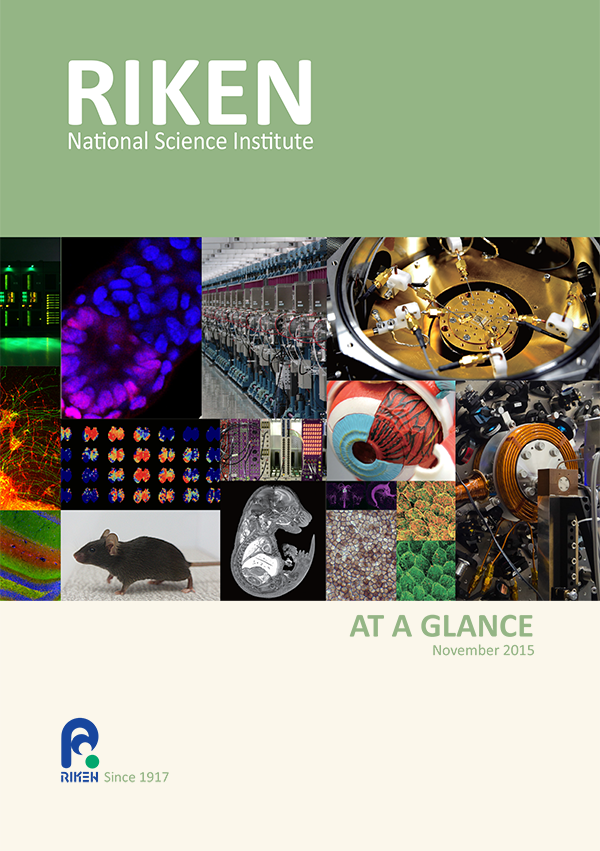 RIKEN at a Glance front cover