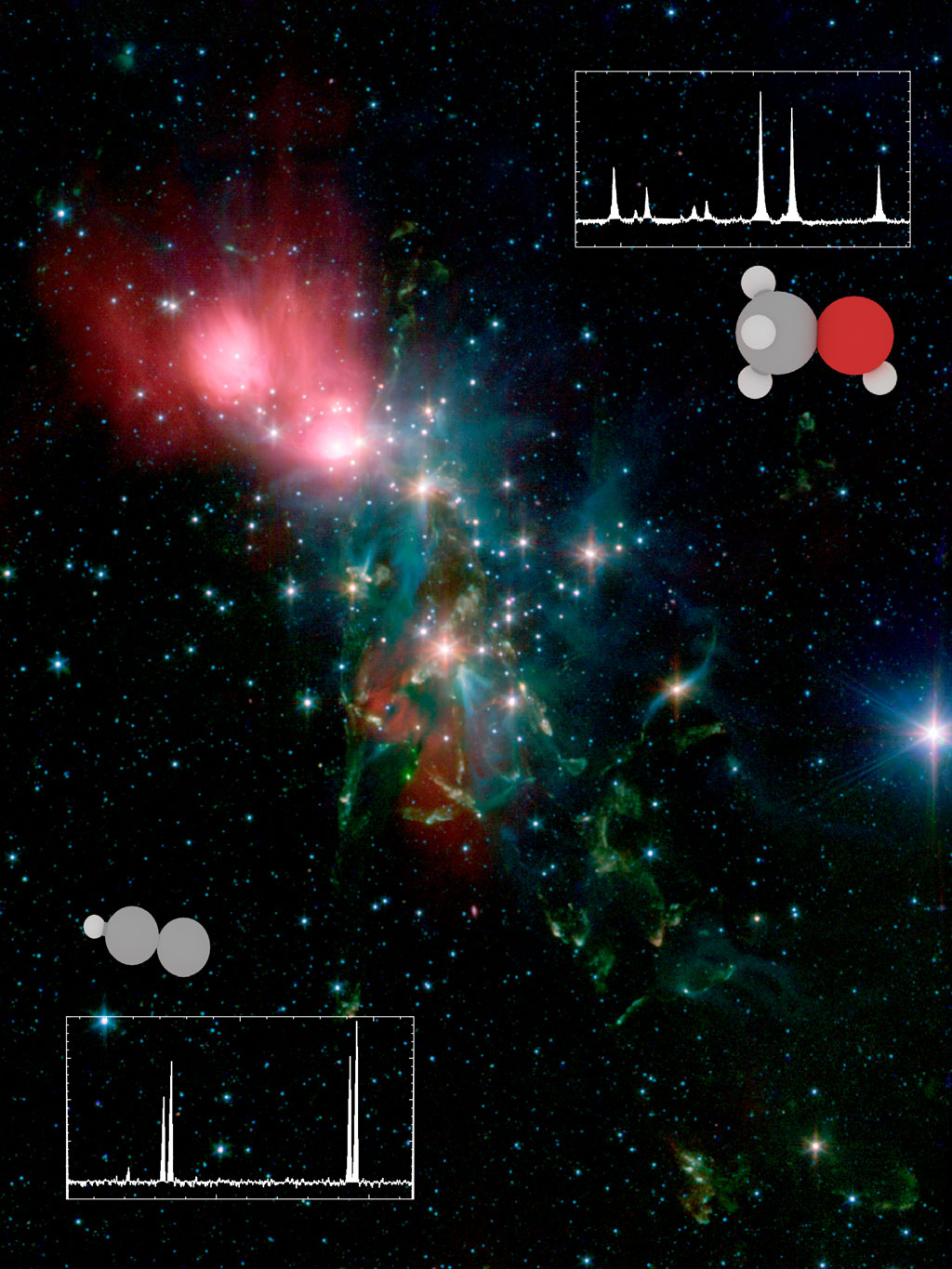 Protostars that exhibit large diversity in organic compounds