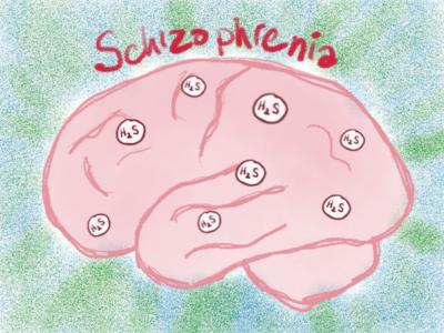 Schizophrenia biomarker (hydrogen sulfide) in human hair