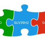 Methylation mutation directly linked to autism