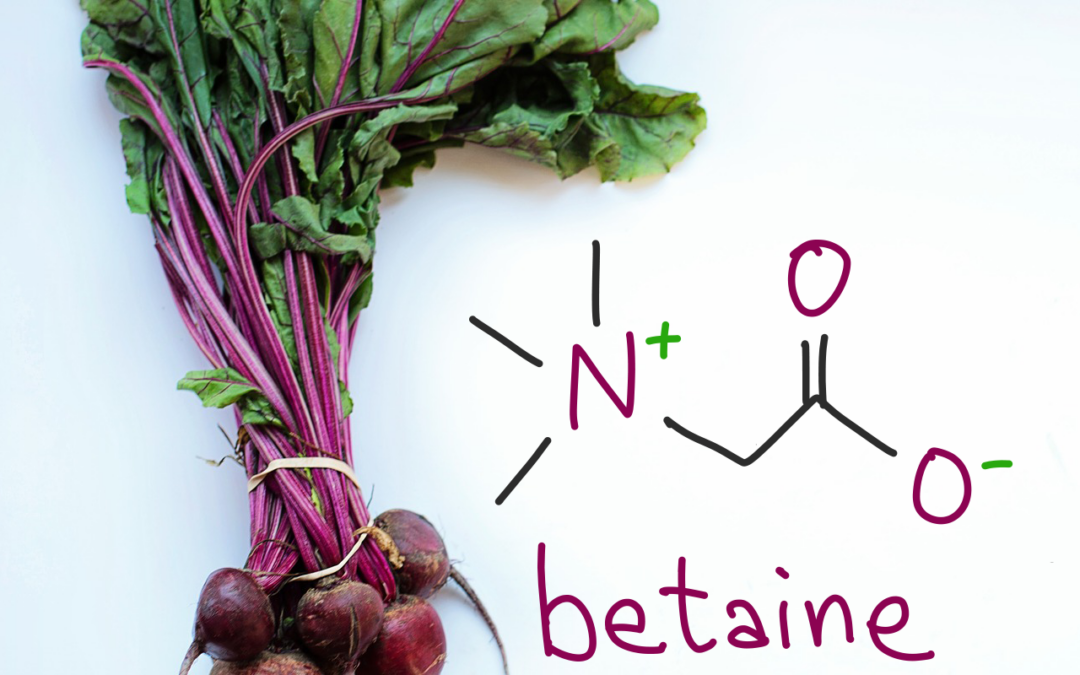 Boosting betaine may be a treatment for schizophrenia