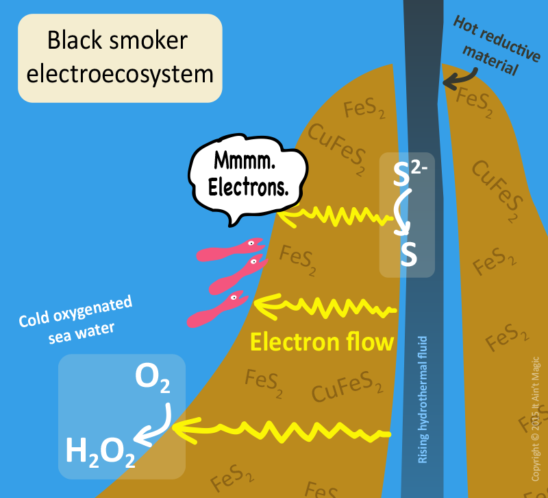 Black smokers and electroecosystems