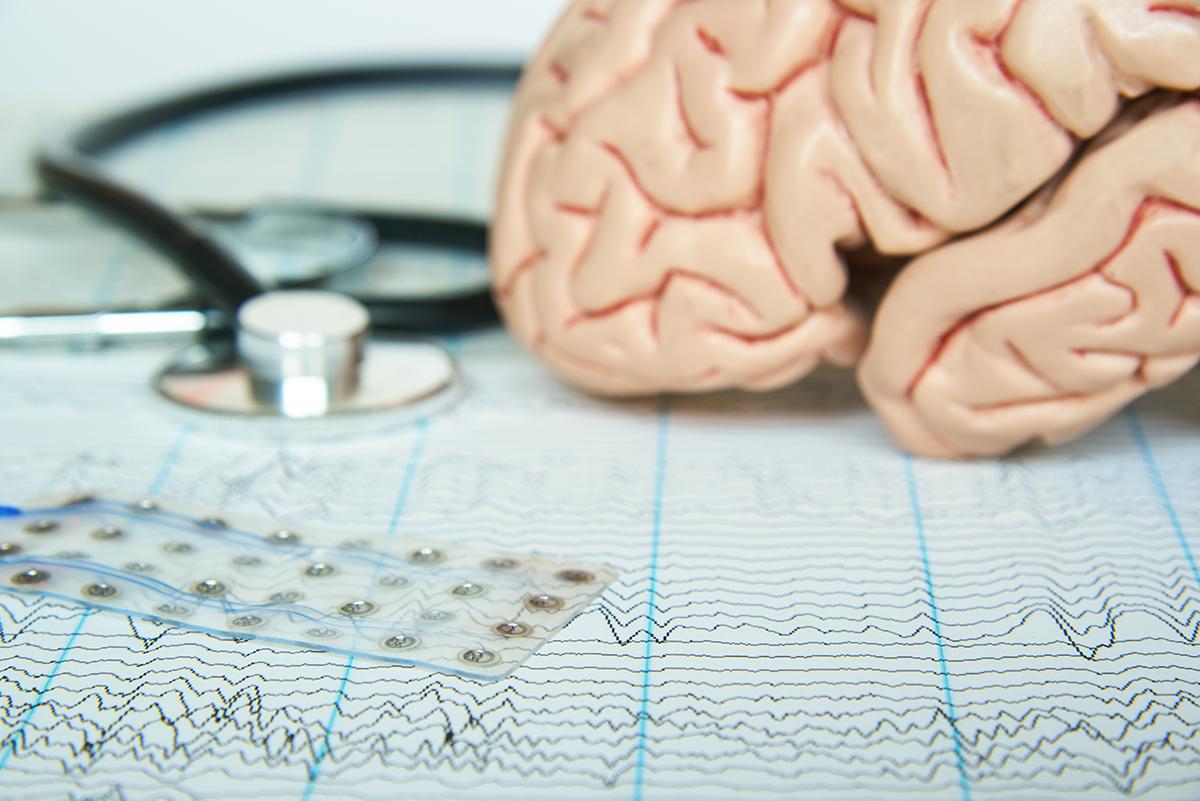 EEGs with model of brain