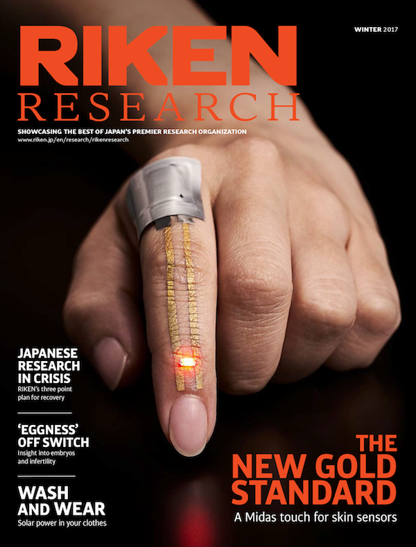 an image of the RIKEN Research Winter 2017 cover