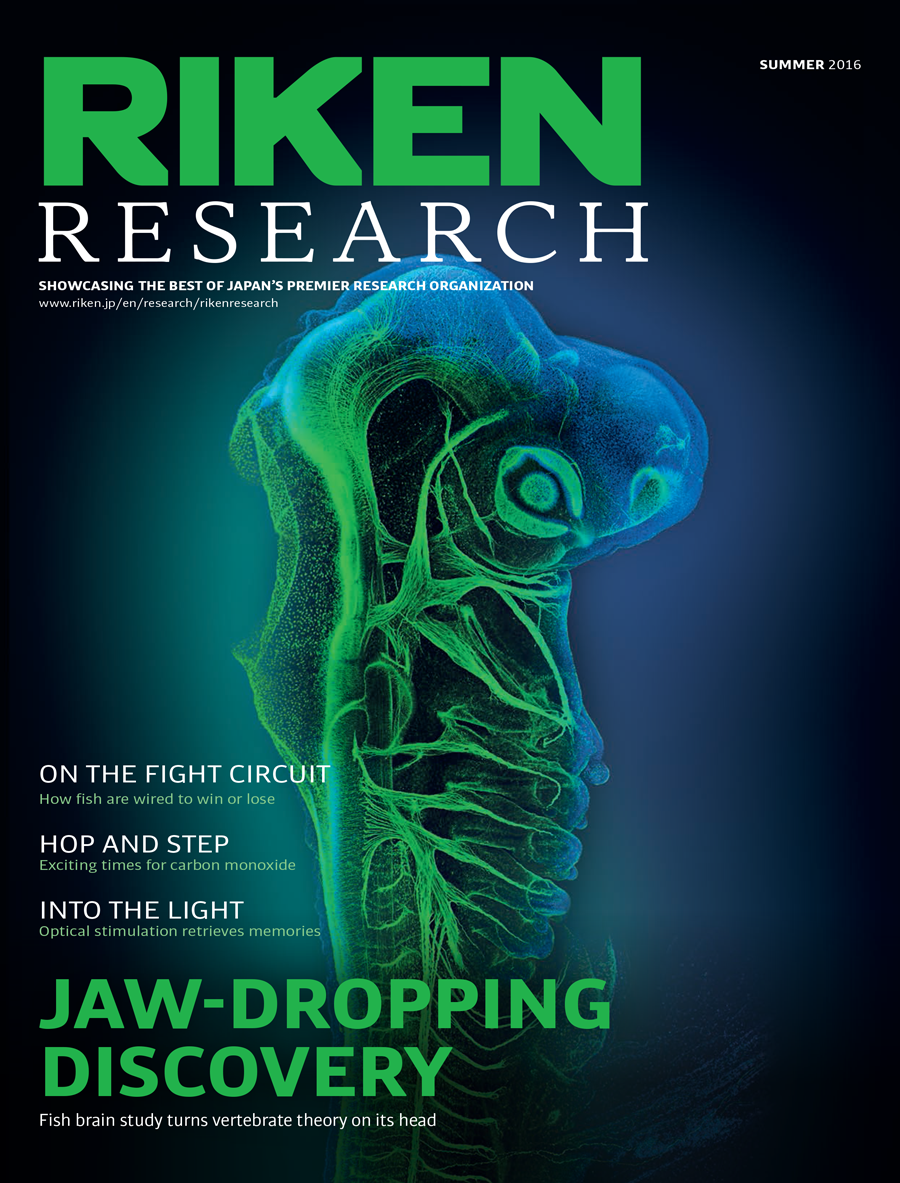 RIKEN Research front cover
