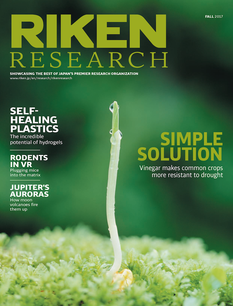 download the fall 2017 issue of RIKEN Research