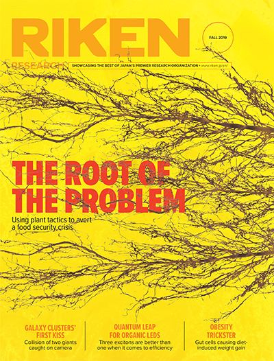 download the Fall 2019 issue of RIKEN Research