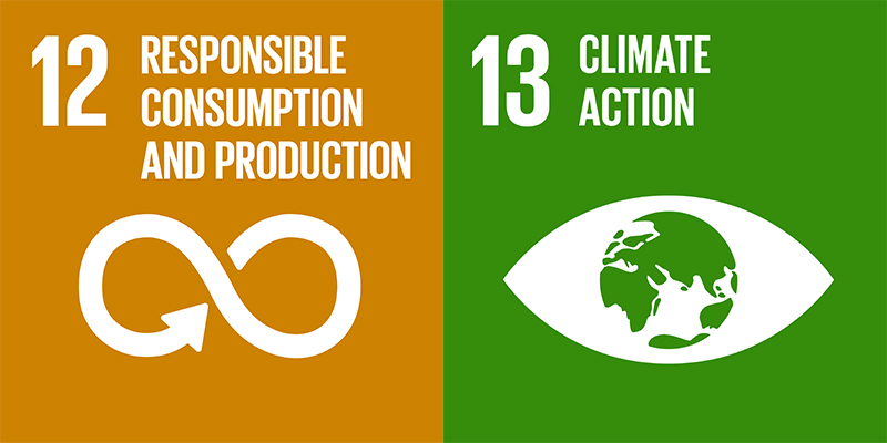 sustainable development goals 12 and 13