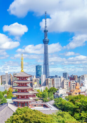 Ultraprecise clocks and the Tokyo Skytree verify Einstein's theory of relativity