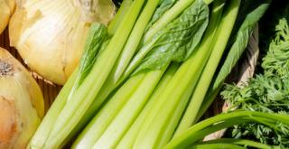 organic nitrogen helped crop growth